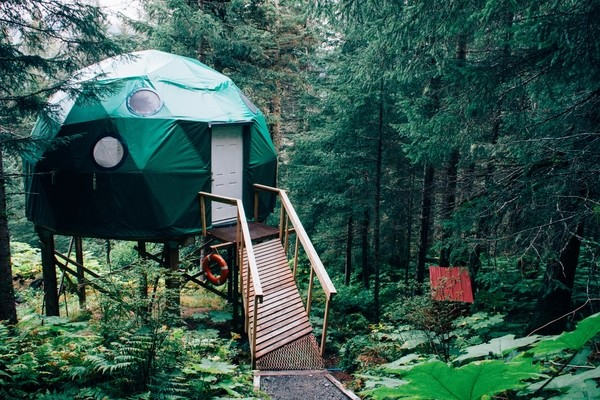 vacation rental in forest