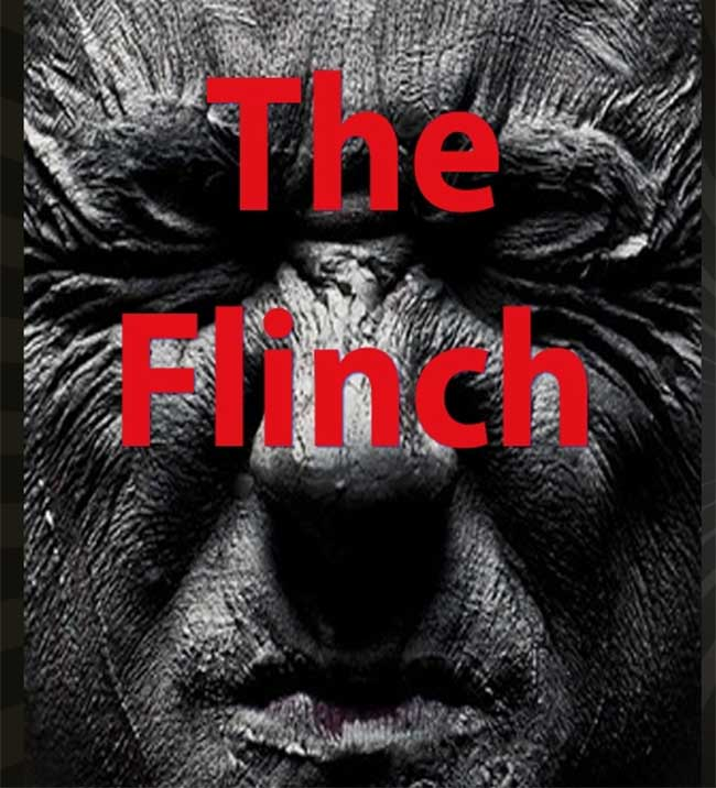 The Flinch by Julian Smith