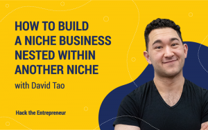 David Tao Interview How to Build a Niche Business